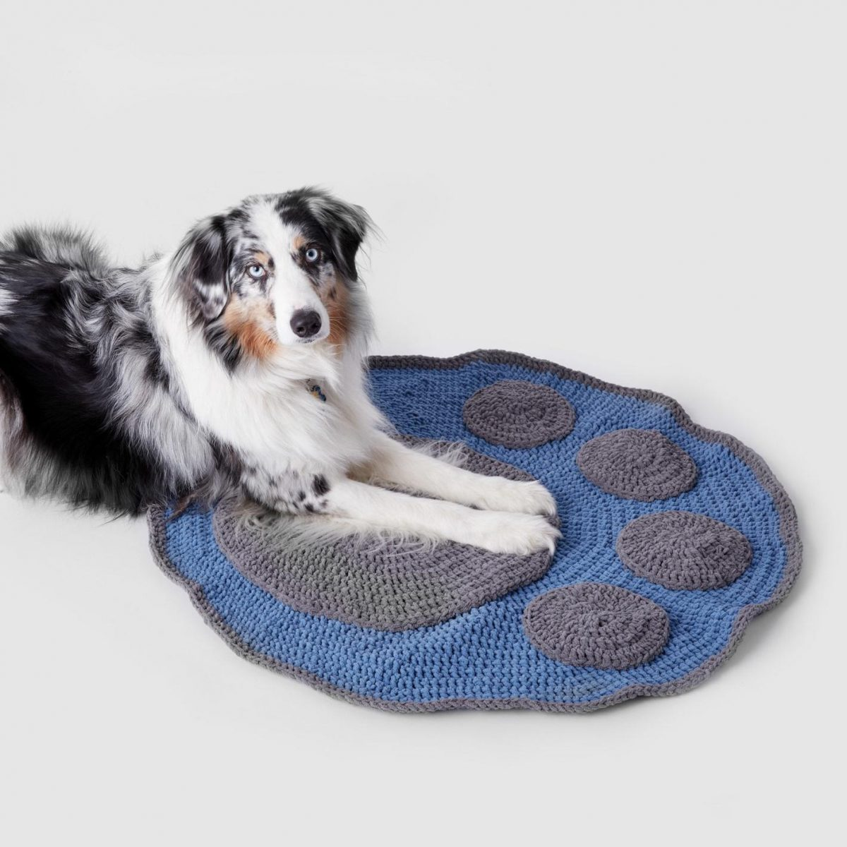 Make-It-Yourself Yarn Crafts for Your Pet Pooch