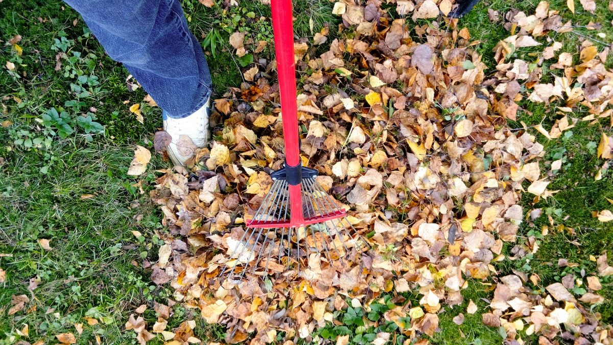 House and Garden Maintenance This Fall!