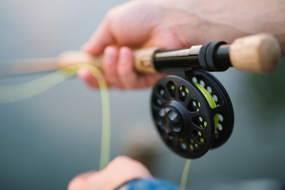 Best Fishing Line to Keep Birds Away
