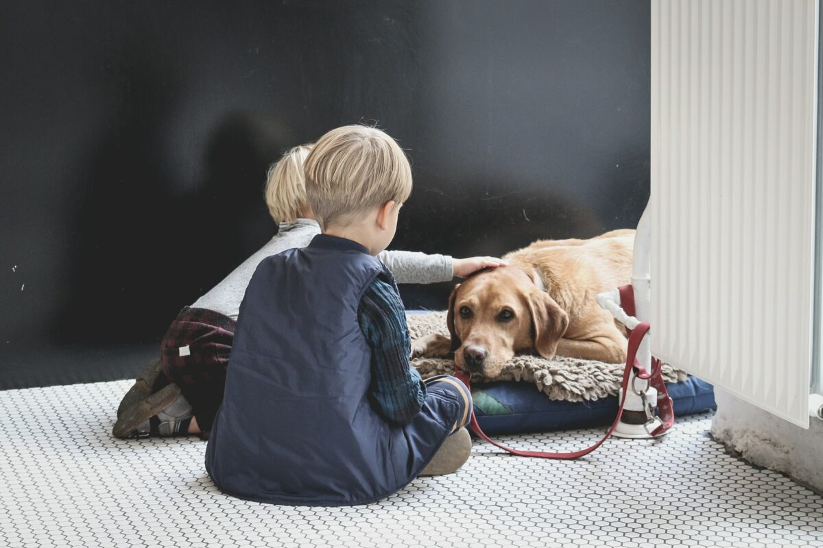 How to Teach Your Child to Take Care of a Dog